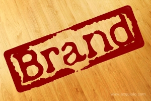 'Good' Brand Initiatives and their impact on consumer Perceptions and Brand SUCCESS